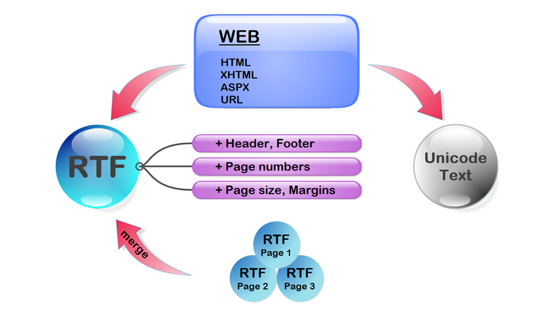HTML to Word online, HTML to RTF C# component